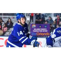 Conacher Returns to Solar Bears from Marlies