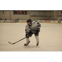 Affiliate Joey Cipollone Expected to Make USHL Debut
