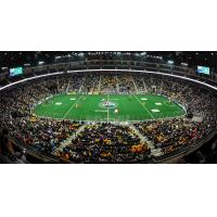 Georgia Swarm to Host First-Ever Home Playoff Game on Saturday, May 20