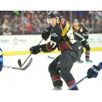 CLEVELAND MONSTERS: Blue Jackets Recall Milano, Forsberg from Monsters