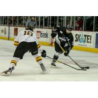 STEELHEADS: Eagles Complete Comeback, Defeat Steelheads in Overtime