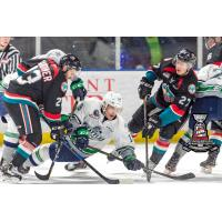 Kelowna (4) Seattle (5) - Game One - Western Conference Championship