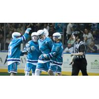 Knighthawks' Playoff Hopes Intact After Beating New England