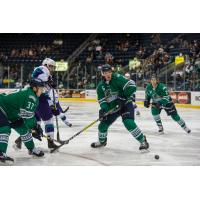 Everblades Bounce Back with 5-1 Victory in Game 5