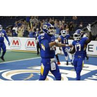 Tampa Bay Storm Sweeps AFL Weekly Awards