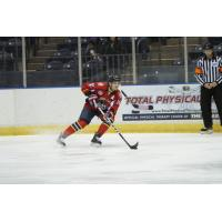 Amarillo Bulls Defenseman Phil Fromberger Commits to St. Thomas University DIII