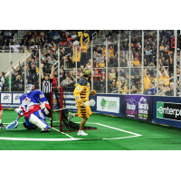 Georgia Swarm Will Face Toronto Rock in NLL East Division Finals