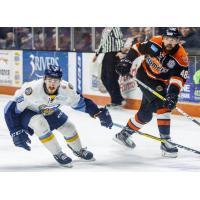 Komets Fall 5-0 at Toledo, Season Ends