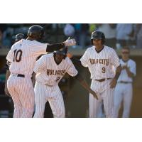 RiverDogs Down ShoreBirds in Home Run Filled Outing