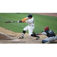 Revs Break out Bats to Take Series Finale