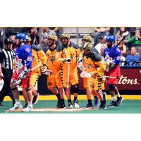 Georgia Swarm Returns Home for Game 2 of East Division Finals this Saturday