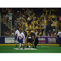 Georgia Swarm Advances to Its First-Ever NLL Champion's Cup