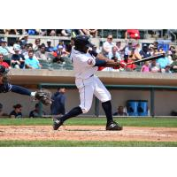 The Bluefish Hold off the Patriots Late Rally