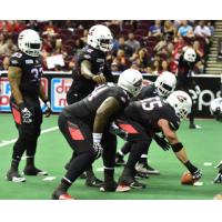 Gladiators Best Baltimore 59-48, Leap into Third Place in AFL Standings