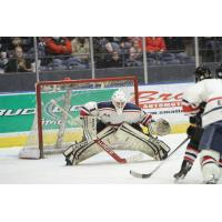 Amarillo Bulls Alumni Collin Delia Signs NHL Deal with Chicago