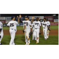 14-Hit Outburst Leads Patriots Past Bees 7-5