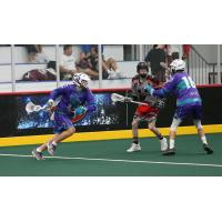 Knighthawks Announce Tryouts for Winter Jr. Teams