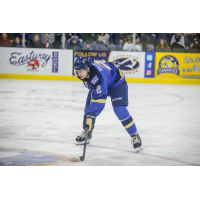 AJ Villella Named USHL Defenseman of the Week