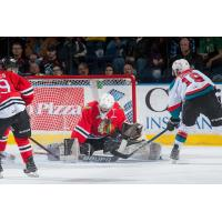 Rockets Host Winterhawks Seeking Revenge
