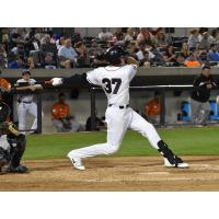 Somerset Patriots First Baseman/Outfielder Joe Maloney Signed by Baltimore Orioles