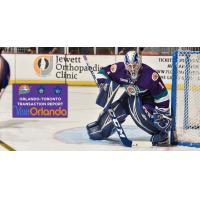 Kaskisuo Joins Solar Bears in Texas