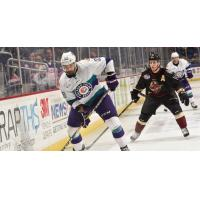 Solar Bears Weekly Report: Week of October 23
