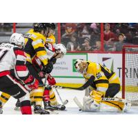Frontenacs Down 67's at Jam-Packed School Day Game