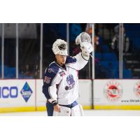 Williams Adds Another Award - ECHL Goaltender of the Month