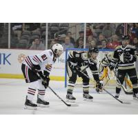 Nailers Leave Fuel in the Doghouse