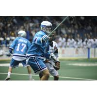 Knighthawks Re-Sign Hossack