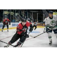 Danforth's Hat TrickLeads Cyclones Past 'Blades 4-1