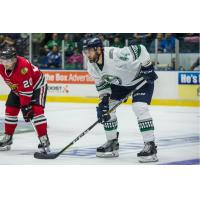 Defenseman Josiah Didier Returns from AHL Charlotte