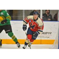 Former K-Wing Curtis Valk Makes NHL Debut with Florida Panthers
