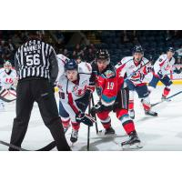 Rockets Set to Weather the Storm as the Hurricanes Visit Prospera Place