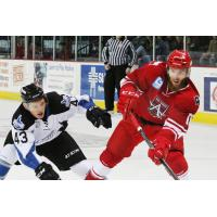 Steelheads Late Comeback Falls Short in Loss to Americans