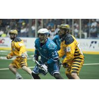 Knighthawks to Battle Swarm in Preseason Finale