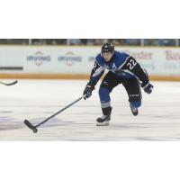 SEA DOGS FALL TO FIRST-PLACEVOLTIGEURS