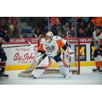 Cavallin Picks up First-Career OHL Victory as Firebirds Earn Second Win in Three Games