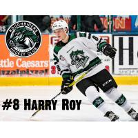 RoughRiders Roy Named to USHL/NHL Top Prospect Game