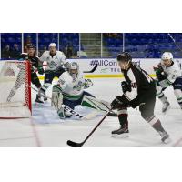 Milos Roman to Play in 2018 CHL/NHL Top Prospects Game