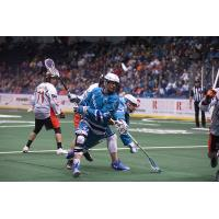 Knighthawks and Bandits in Holiday Showdown