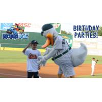 New Birthday Party Packages on Sale January 11