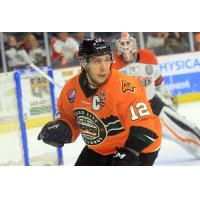 Nailers Acquire Francis & Turner in Trade with Orlando