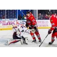 Monsters Outlast IceHogs, 4-1