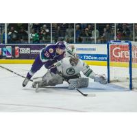 'Blades and Booth Shine in 4-1 Win over Solar Bears
