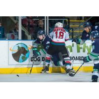 Rockets Face off with the Defending Champs at Prospera Place