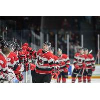 Yule Gets Birthday Present, Propels 67's to Victory over Petes