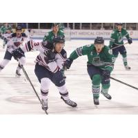 Quick Strike 'Blades Down Rival Stingrays 5-3
