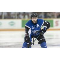 Sea Dogs Name Bailey Webster New Captain