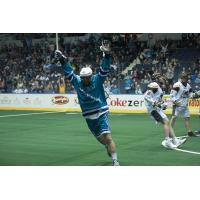 Knighthawks Activate Forward Dan Lomas